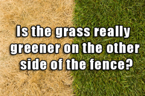 ... - Is the grass really greener on the other side of the fence