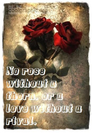 essay on no roses without thorns