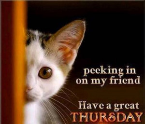 Have a great Thursday!