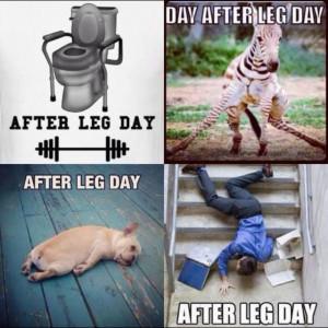 LEG DAY!! #gymhumor #fitness #funny