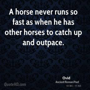 ... quote horse gifs horses galloping galloping equine gifs equine quotes