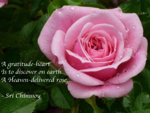 Poems about Gratitude