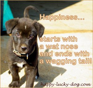 Happy Dog Quotes