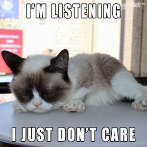 Top Ten Tuesday ~ Grumpy Cat ~ No. 50