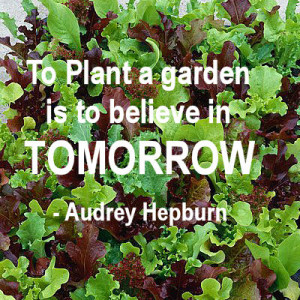 Gardening Quotes and Inspirational Sayings