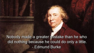Edmund burke quotes and sayings do nothing mistake