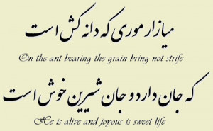 "One thousand years ago, Ferdowsi, the Iranian poet said: ""On the ant ..."