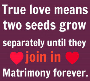 : Finding True Love Quotes Love True Romantic Quotes True Love Quotes ...