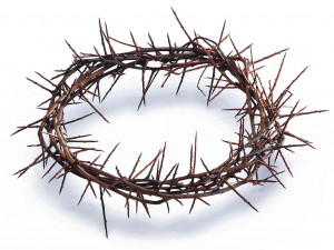 Related Pictures crown of thorns crown of thorns on red cloth ...