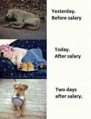 Funny Salary Pictures, Jokes, Quotes, images Scraps, Funny dog ...