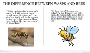 Funny memes difference between wasps and bees
