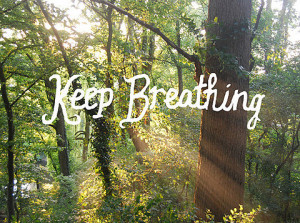 keep breathing, nature, quote, sun, trees