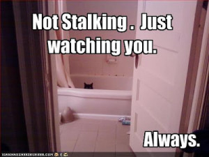 Have you ever had a stalker?