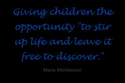How is a Montessori Preschool different from other Preschools?