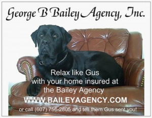 gus is a 2 year old black labrador retriever owned by chuck spaulding ...