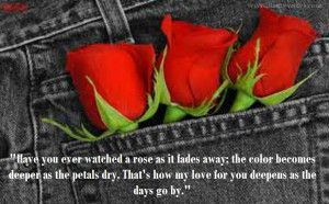 ... love quotes quotes about roses and love roses quotes and sayings