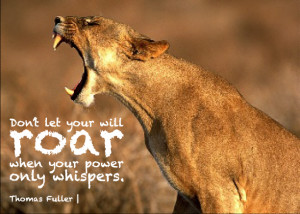 lion and lioness strong quotes