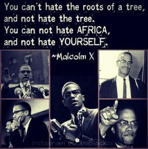 Malcolm X. Evolution from advocate of civil rights to becoming an ...
