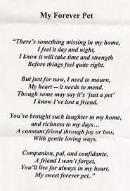 dog passing quote - Google Search
