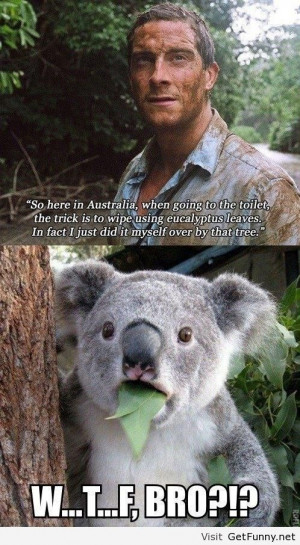 Bear Grylls in Australia - Funny Pictures, Funny Quotes, Funny Memes ...