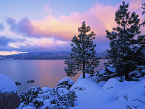 Winter Time in Tahoe!