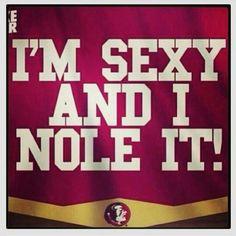 Tallahassee, FLORIDA STATE, FSU, Tailgating, Football sign - Custom ...