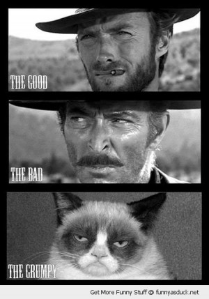 angry cat lolcat animal clint eastwood good bad grumpy western movie ...