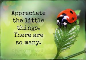 ... , Ladybugs, Lady Beetles, Ladybeetle, Lady Bugs, Pictures Quotes