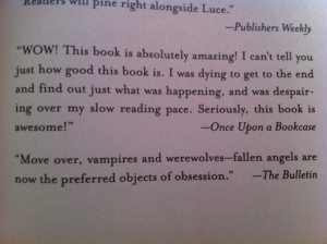 Quote taken from my review of Fallen by Lauren Kate mentioned in a ...