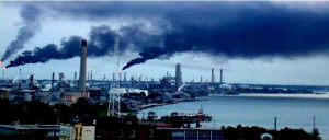 pollution makes humans sick, pollution kills humans, animals and ...