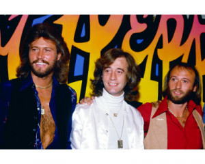 The members of the Bee Gees were Barry Gibb, Robin Gibb, and Maurice ...