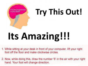 Funny Fact about Your Brain