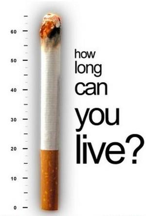Australia – Leading Nation in Antismoking Efforts