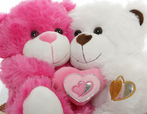 Valentine_Teddy_Bear_Gift_Package_Hot_For_You_Hot_Pink_and_White_Big ...