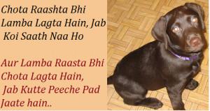 funny sayings life hindi for facebook