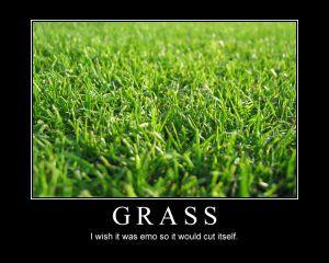 Emo_Grass_by_Voralyn.jpg