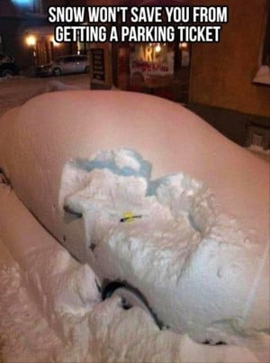 parking ticket in the snow, funny pictures