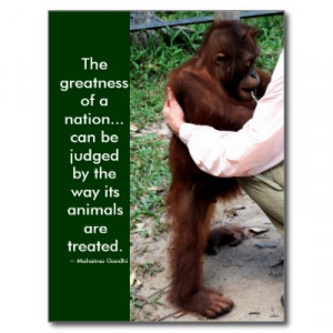 endangered animals quotes