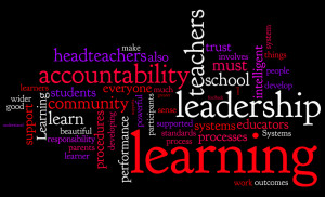 Learning leadership, intelligent accountability and beautiful systems!