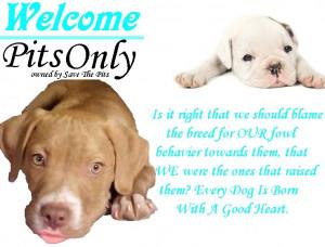 Sad Pitbull Quotes