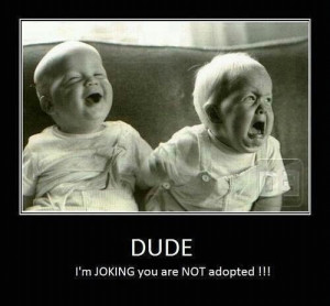 funny, lol, quotes