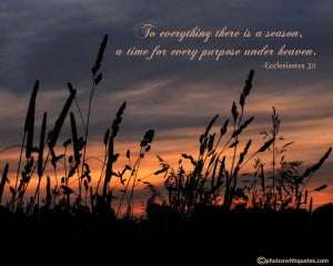 Bible Verse - To everything there is a season