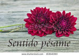 Condolences Images In Spanish Condolences/spanish