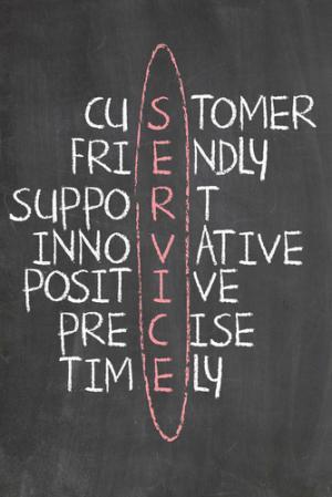 great customer service skills