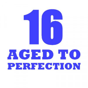 funny 16th birthday quotes