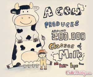 Funny Cow Jokes Stuff The News Friend Quotes Sayings