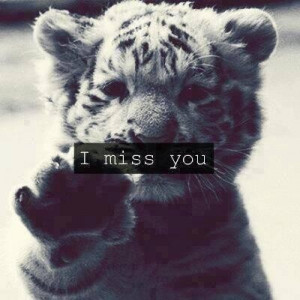 cute, i miss you, life, love you, missing you, pretty, quotes