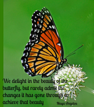 butterfly-quote1