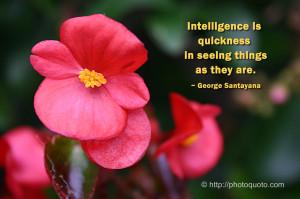 Sayings, Quotes: George Santayana