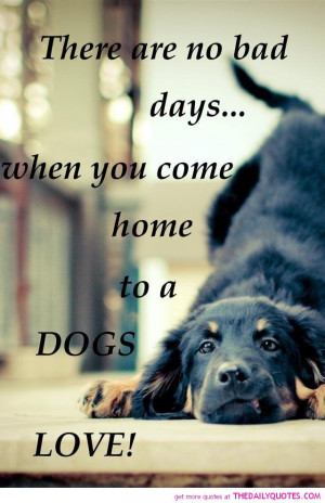 dogs-love-animal-lovers-pics-quotes-sayings-pictures.jpg